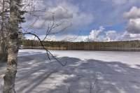 Lake Elamonjärvi